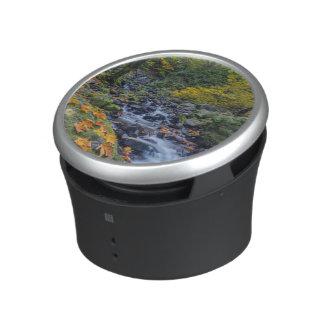 Autumn Color Along Starvation Creek Falls Bluetooth Speaker
