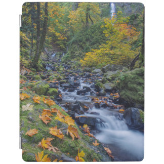 Autumn Color Along Starvation Creek Falls iPad Cover