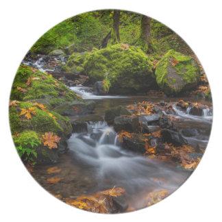 Autumn color along Starvation Creek Falls Plate