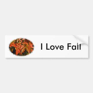 Autumn Color Bumper Sticker