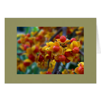 Autumn Color Custom Greeting Card