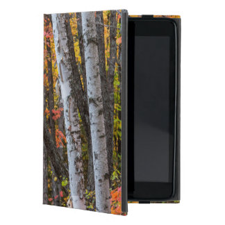 Autumn Color In The Forest Near Copper Harbor Cover For iPad Mini