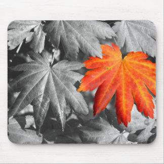 Autumn Color Mousepad