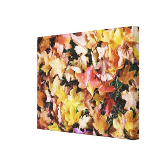 Autumn Colored Leaves Stretched Canvas Prints