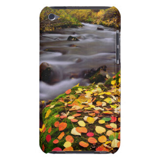 Autumn Colors along McGee Creek Barely There iPod Covers
