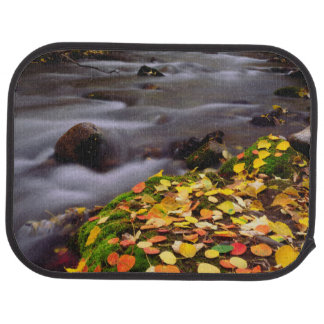 Autumn Colors along McGee Creek Car Mat