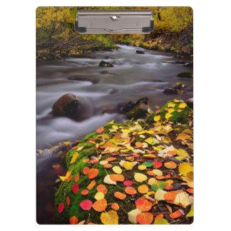 Autumn Colors along McGee Creek Clipboard