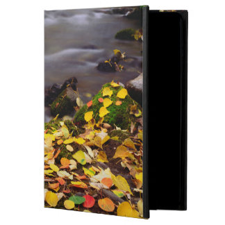 Autumn Colors along McGee Creek Cover For iPad Air