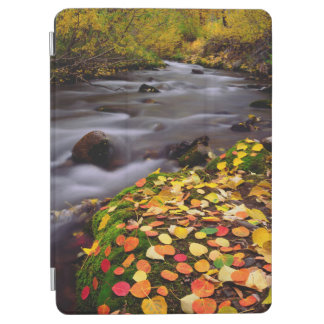 Autumn Colors along McGee Creek iPad Air Cover