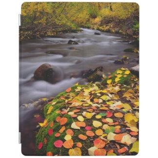 Autumn Colors along McGee Creek iPad Cover