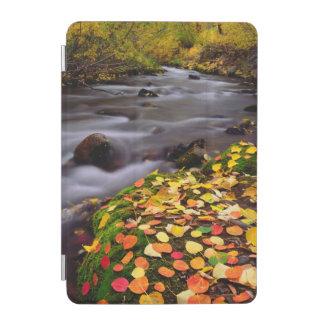 Autumn Colors along McGee Creek iPad Mini Cover