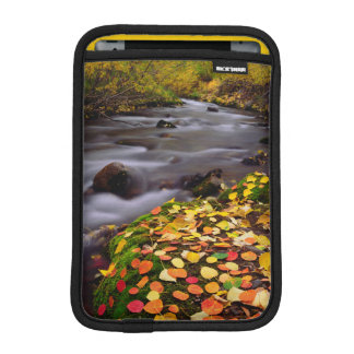 Autumn Colors along McGee Creek iPad Mini Sleeve