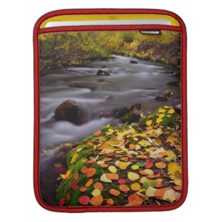 Autumn Colors along McGee Creek iPad Sleeve