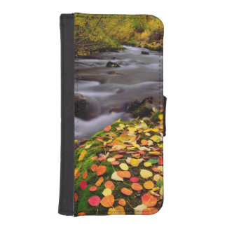 Autumn Colors along McGee Creek iPhone SE/5/5s Wallet Case