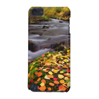 Autumn Colors along McGee Creek iPod Touch 5G Cases