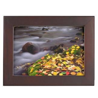 Autumn Colors along McGee Creek Keepsake Box