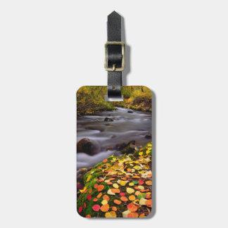 Autumn Colors along McGee Creek Luggage Tags
