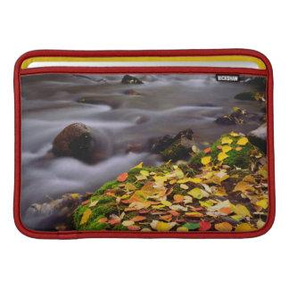 Autumn Colors along McGee Creek MacBook Air Sleeve