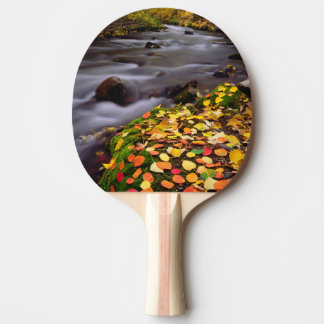 Autumn Colors along McGee Creek Ping Pong Paddle