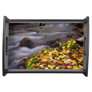 Autumn Colors along McGee Creek Serving Tray