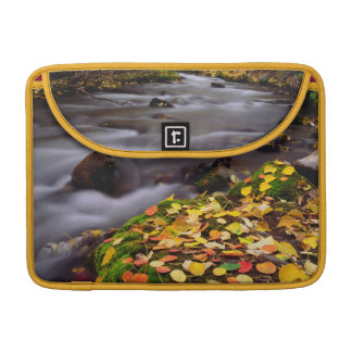 Autumn Colors along McGee Creek Sleeve For MacBook Pro