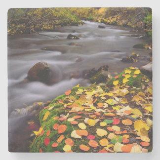 Autumn Colors along McGee Creek Stone Coaster