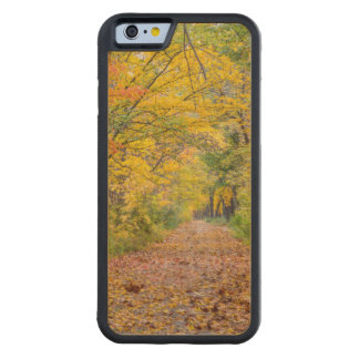 Autumn Colors At Independence State Park Carved Maple iPhone 6 Bumper Case