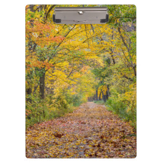 Autumn Colors At Independence State Park Clipboard