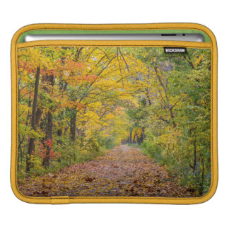 Autumn Colors At Independence State Park iPad Sleeve
