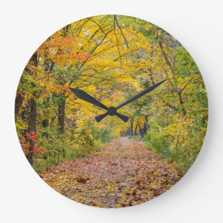 Autumn Colors At Independence State Park Large Clock