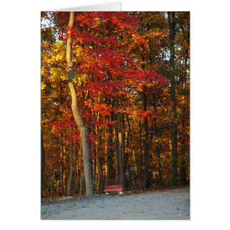 Autumn Colors Brighten Any Day Card