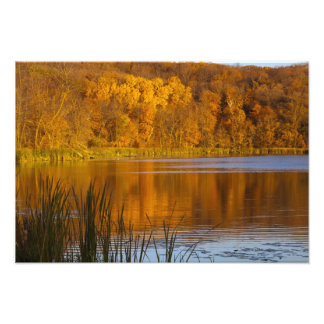 Autumn colors in Maplewood State Park near Photographic Print