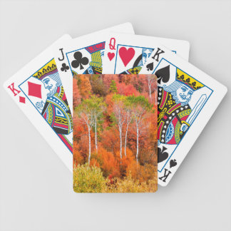 Autumn Colors In Rocky Mountains, Wyoming, USA Bicycle Playing Cards