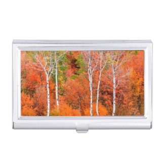 Autumn Colors In Rocky Mountains, Wyoming, USA Business Card Holder