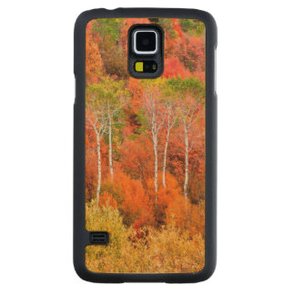 Autumn Colors In Rocky Mountains, Wyoming, USA Carved Maple Galaxy S5 Case