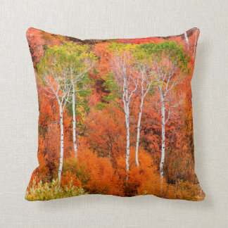 Autumn Colors In Rocky Mountains, Wyoming, USA Cushion