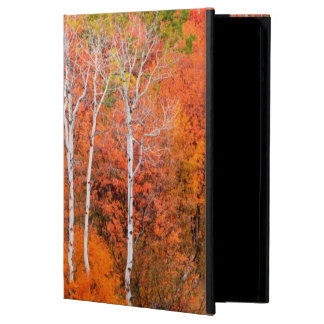 Autumn Colors In Rocky Mountains, Wyoming, USA iPad Air Cover
