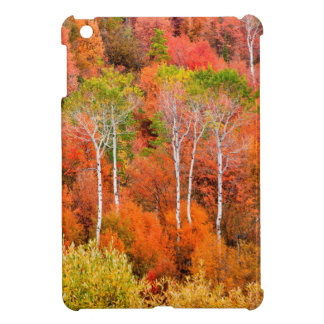 Autumn Colors In Rocky Mountains, Wyoming, USA iPad Mini Cover