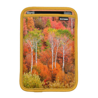 Autumn Colors In Rocky Mountains, Wyoming, USA iPad Mini Sleeves