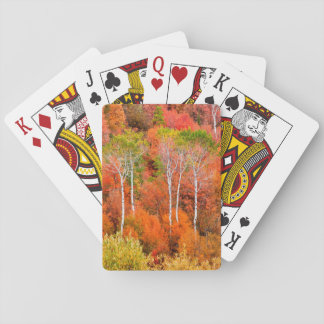 Autumn Colors In Rocky Mountains, Wyoming, USA Playing Cards