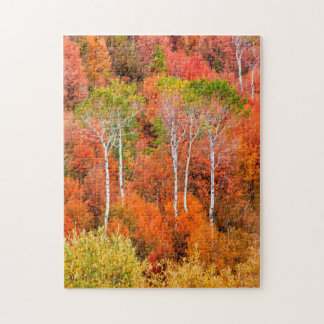 Autumn Colors In Rocky Mountains, Wyoming, USA Puzzle