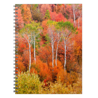 Autumn Colors In Rocky Mountains, Wyoming, USA Spiral Notebook