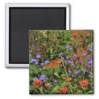 Autumn Colors Fridge Magnet