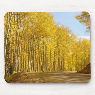 Autumn Colors Mouse Pad
