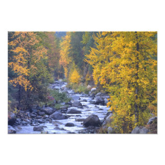 Autumn colors of forests in The Cascade 4 Photo Print