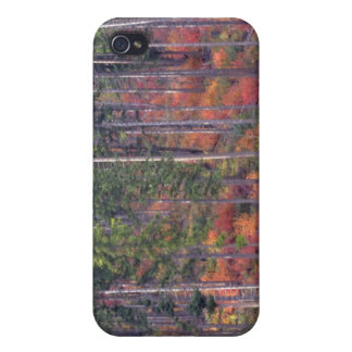 Autumn colors of forests in The Cascade 5 Case For The iPhone 4