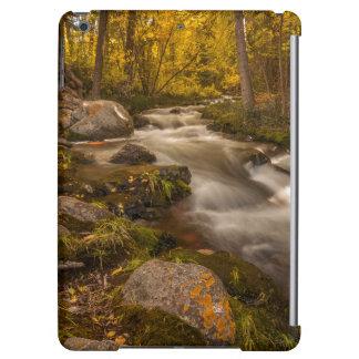 Autumn colors on Crestone Creek