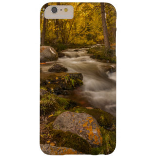 Autumn colors on Crestone Creek Barely There iPhone 6 Plus Case