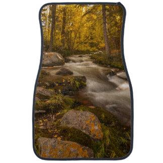 Autumn colors on Crestone Creek Car Mat