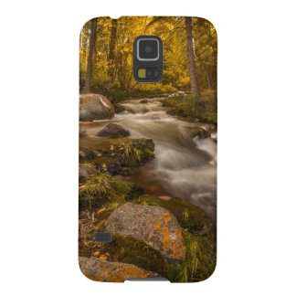 Autumn colors on Crestone Creek Galaxy S5 Case